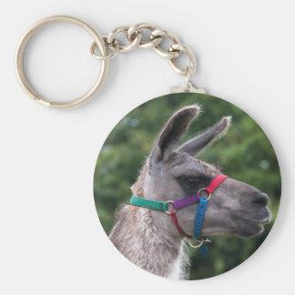 Porte-clés Supériorité de lama