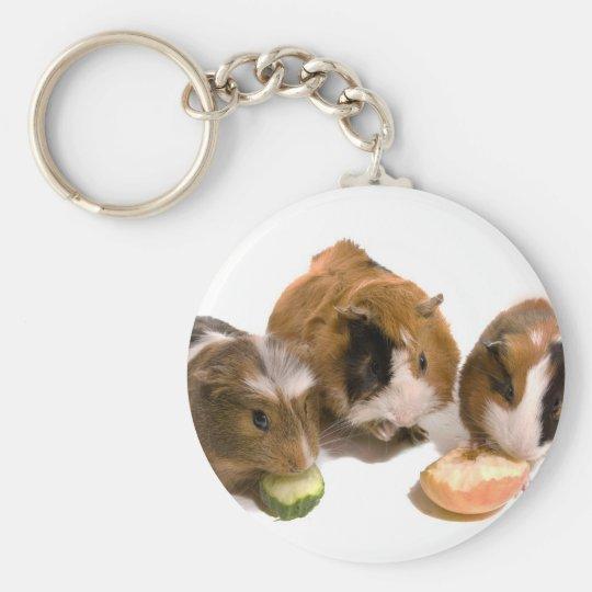 Porte-clés three guinea pigs who eat,