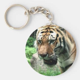 Porte-clés Tigre au porte - clé de zoo de Bronx