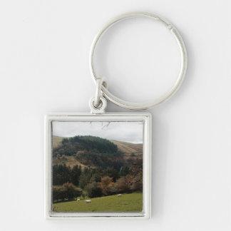 Porte-clés Vallée Pays de Galles de fanion