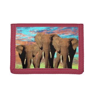 Portefeuille À 3 Volets Lever de soleil opale d'éléphant,