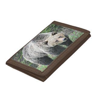 Portefeuille À 3 Volets Ours gris de Brown marchant dans les bois