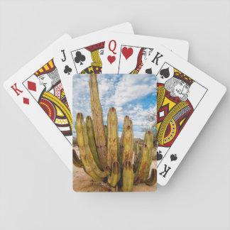 Portrait de cactus de vieil homme, Mexique Cartes À Jouer