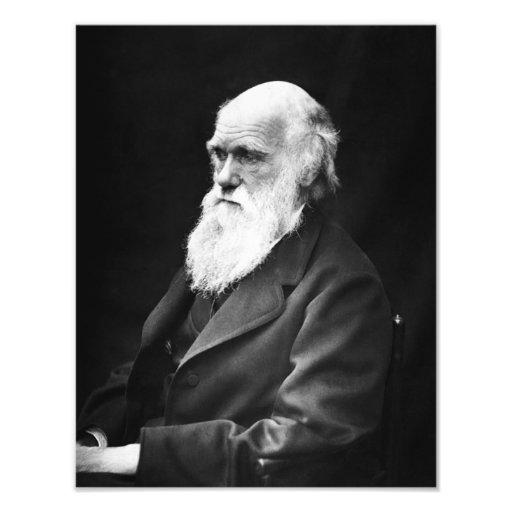 Portrait de Charles Darwin Tirage Photo