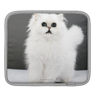 Portrait de chaton housses iPad