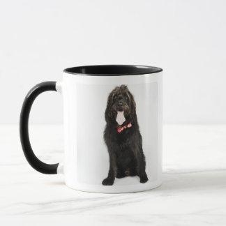 Portrait de chien de Labradoodle Tasses