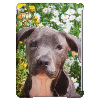 Portrait de chiot de bull-terrier du Staffordshire
