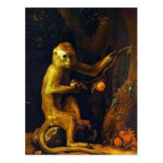 Portrait de George Stubbs- d'un singe Cartes Postales