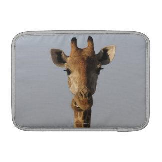 Portrait de girafe (camelopardalis de Giraffa) Poche Macbook
