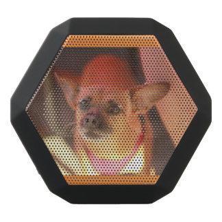 Portrait de haut-parleur de chien de chiwawa de