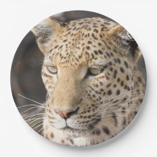 Portrait de léopard assiettes en papier