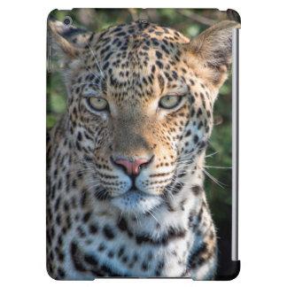Portrait de léopard, fin