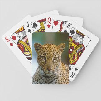 Portrait de léopard jeu de cartes