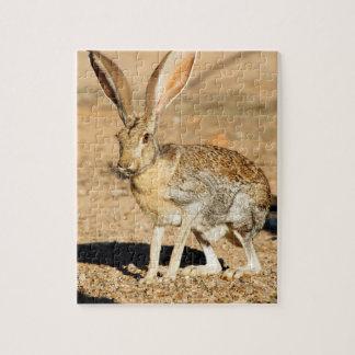 Portrait de lièvre d'antilope, Arizona Puzzle