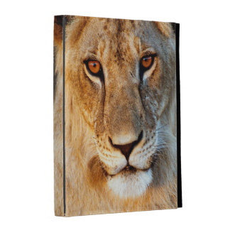 Portrait de lionne (Panthera Lion). Tarangire Coques iPad