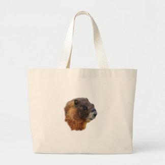 Portrait de Marmot Sacs