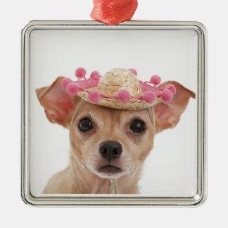 Portrait de petit chien dans le sombrero ornement carré argenté