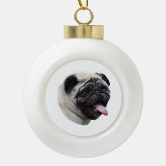 Portrait de photo de chien de carlin ornement