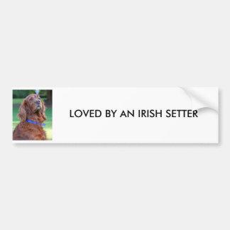 Portrait de photo de chien de poseur irlandais bea adhésif pour voiture