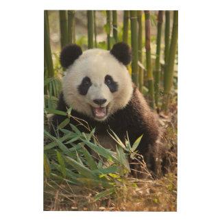 Portrait de sourire de panda impression sur bois