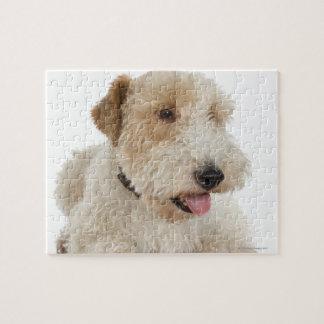Portrait de studio de chiot blond comme les blés puzzle