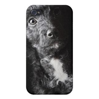 Portrait de studio de cric-un-griffonnage noir coques iPhone 4