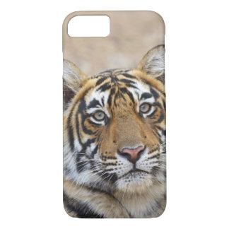 Portrait de tigre de Bengale royal, Ranthambhor Coque iPhone 7