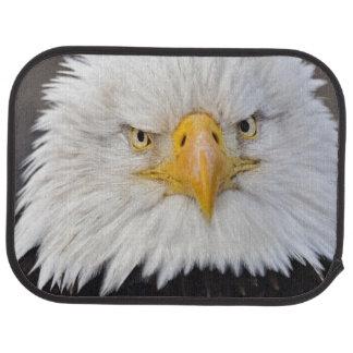 Portrait d'Eagle chauve, Eagle chauve en vol, Tapis De Voiture
