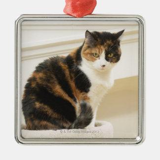 Portrait du chat 2 ornement carré argenté