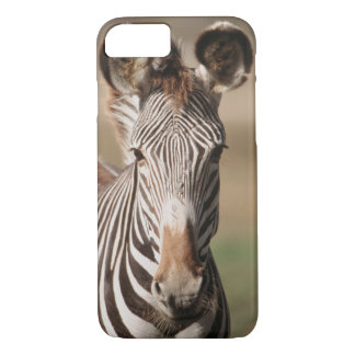 Portrait du zèbre de Grevy Coque iPhone 7