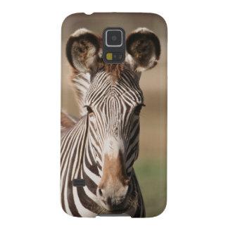 Portrait du zèbre de Grevy Coque Pour Samsung Galaxy S5