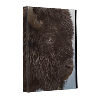 Portrait d'un bison Taureau sous la pluie 2 Coque Folio iPad