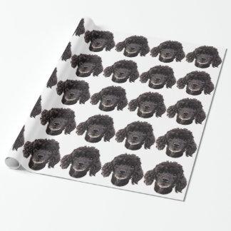 Portrait d'un caniche noir papier cadeau noël