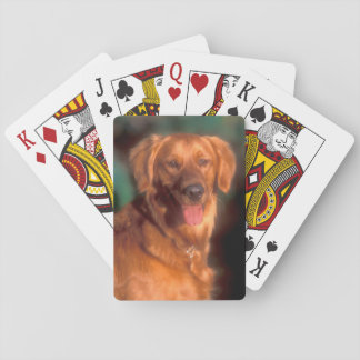 Portrait d'un golden retriever jeu de cartes