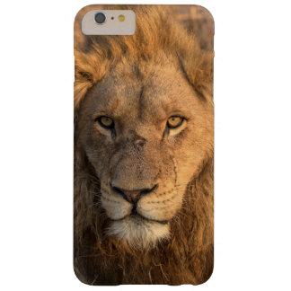Portrait d'un lion masculin coque iPhone 6 plus barely there