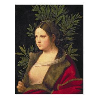 Portrait d'une jeune femme, 1506 carte postale