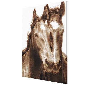 Portrait III de cheval Toile