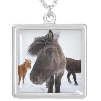 Portrait islandais de cheval, Islande Pendentif Carré