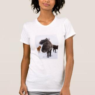 Portrait islandais de cheval, Islande T-shirt
