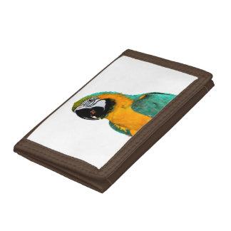 portrait turquoise d'oiseau de perroquet d'ara