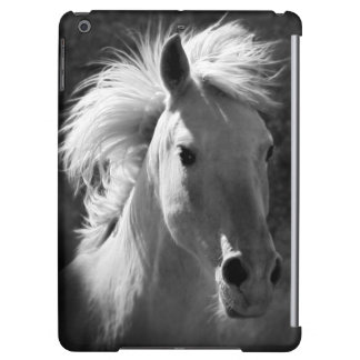 Portrait V de cheval