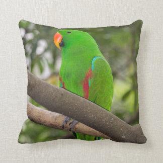 Portrait vert de perroquet coussin