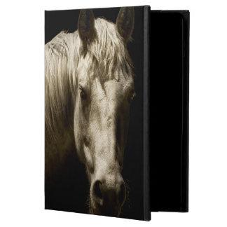 Portrait VI de cheval