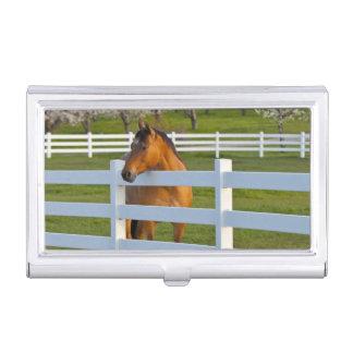 Poses de cheval par le verger de cerise à tête boîtier pour cartes de visite