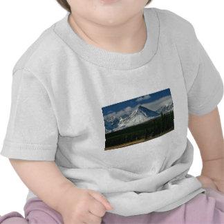 Position au-dessus du vert des natures t-shirts