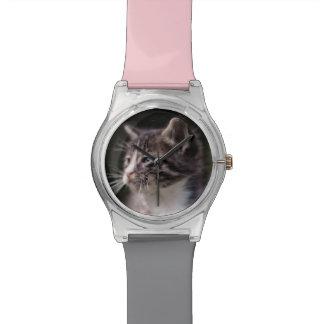 Position de chaton et strabisme montres
