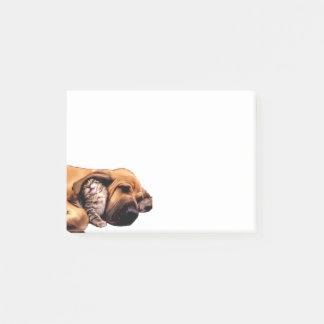 Post-it® Amour de meilleurs amis de chat de chien de limier