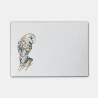 Post-it® Art de nature d'oiseau de hibou de grange