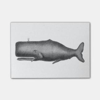 Post-it® Baleine vintage