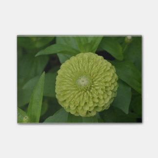 Post-it® Fleur verte de floraison de Zinnia